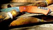 Victorinox Ranger wood 55 zsebkés diófa